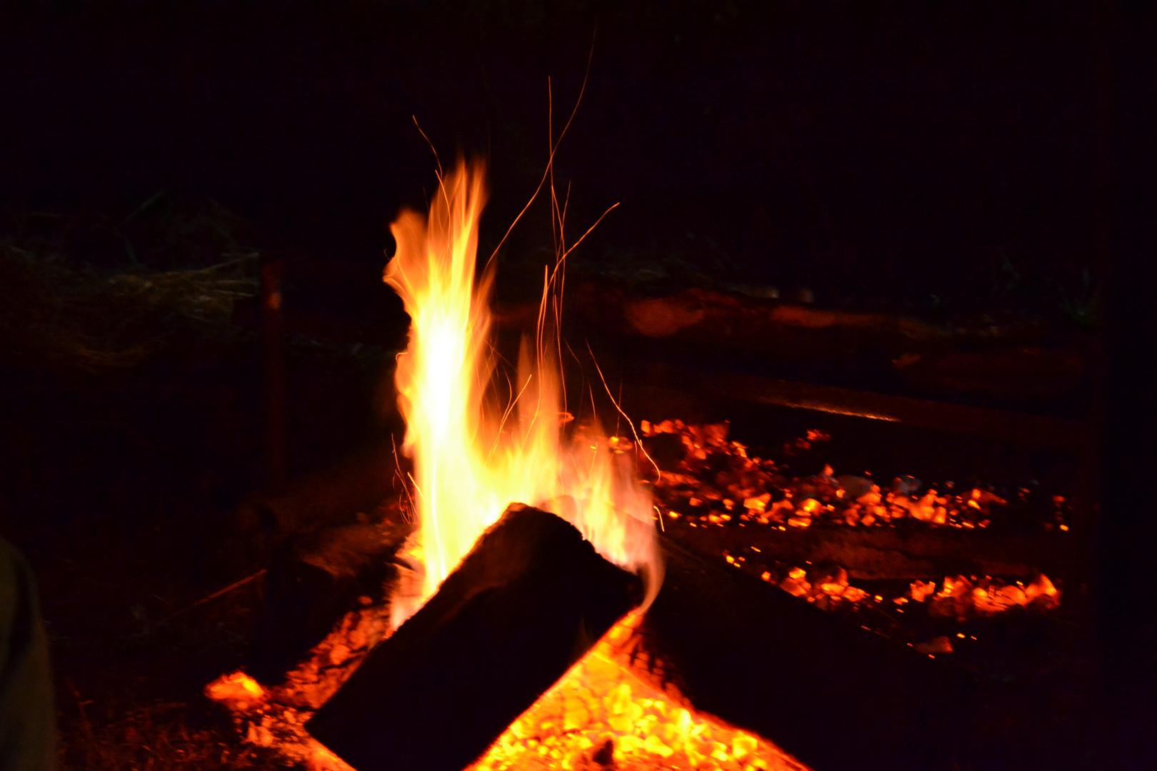 ...Fuego fuego fuego fuego Estamos enfermos Estamos enfermos Perdonennos Perdonennos...
