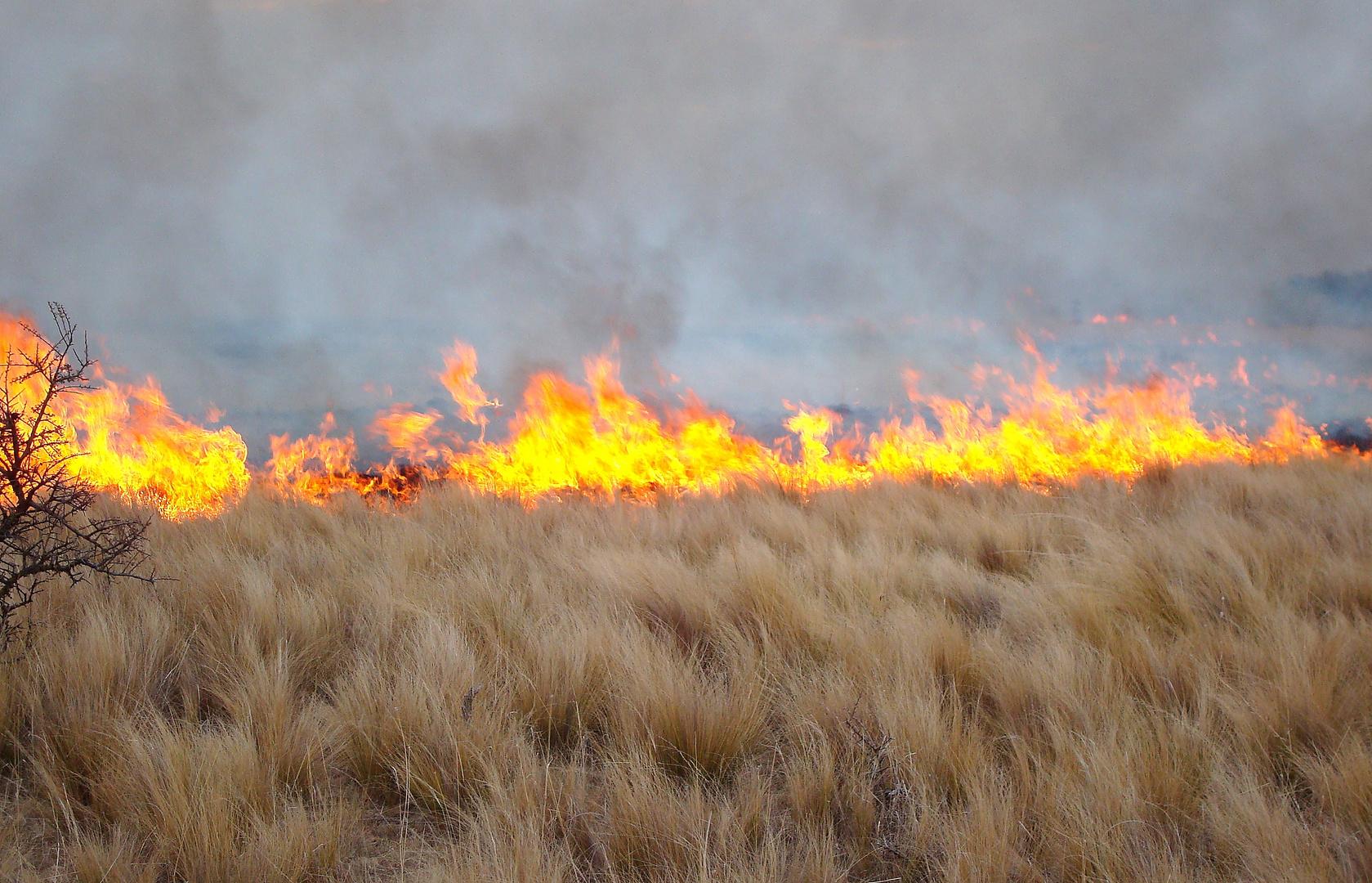 Fuego por negligencia del hombre