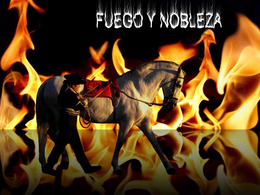 FUEGO Y NOBLEZA