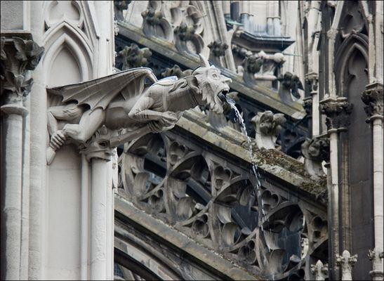 Führung über die Dächer des Kölner Doms #5