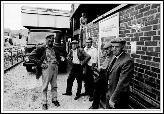Fünf Schäfer und zwei Jungen, England, Cornwall 1984