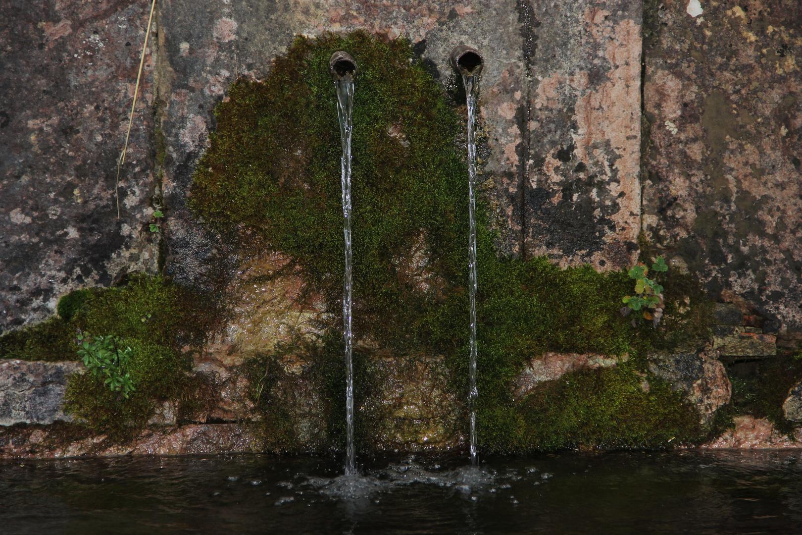 ... Fuente de agua