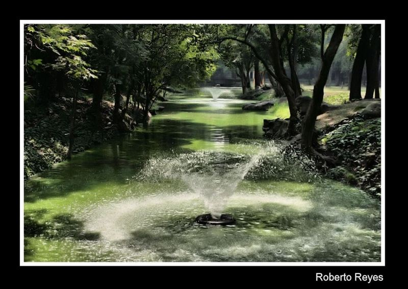 Fuentes de Chapultepec (para Tim Rüth)
