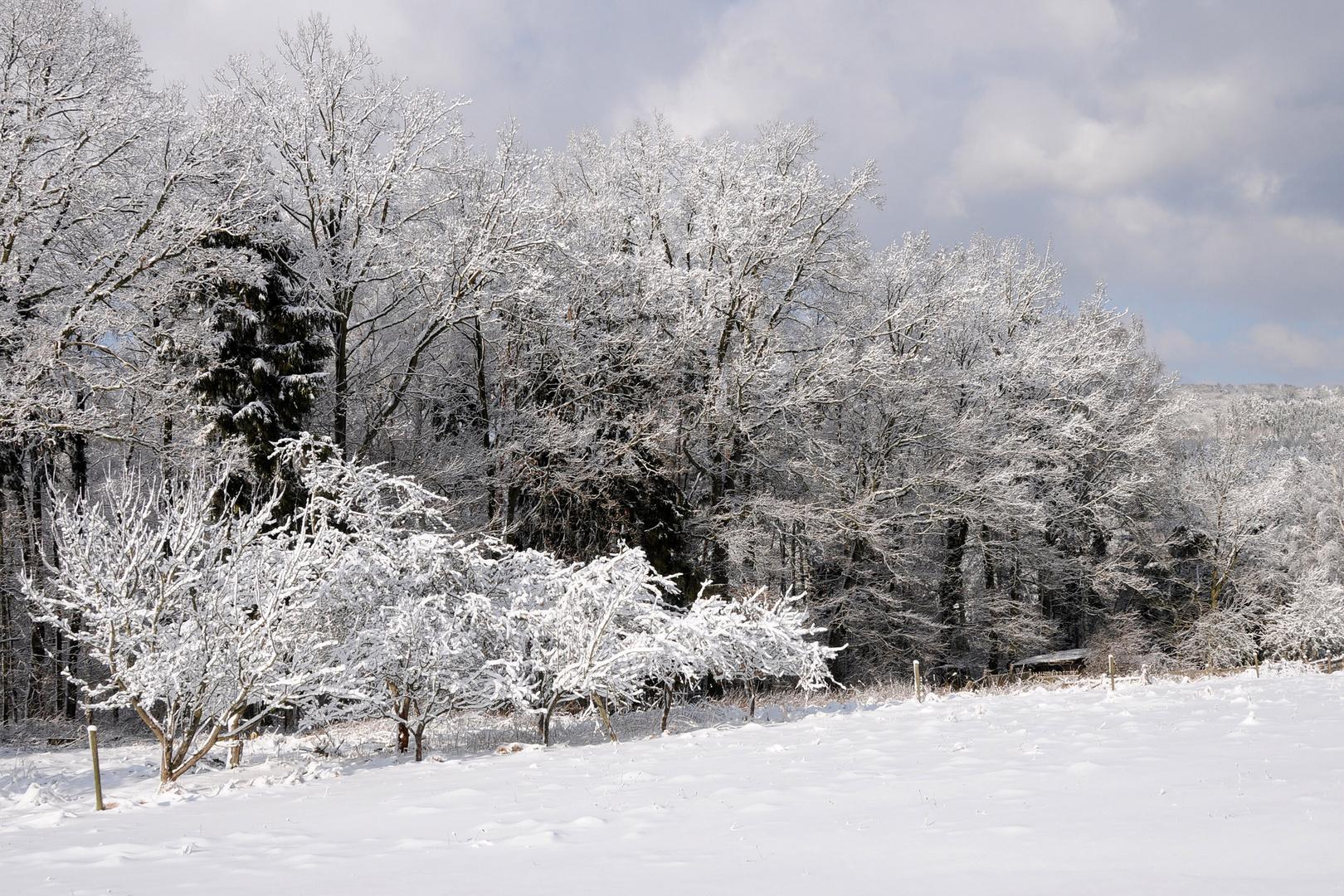 für alle denen es zu wenig Schnee gibt