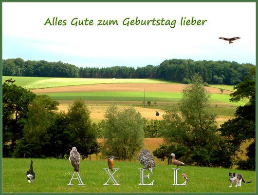 Für Axel