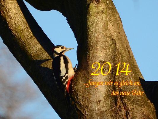 Für das neue Jahr die besten Wünsche ...