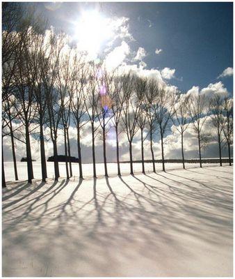 für den Fall das noch jemand Schnee sehen kann