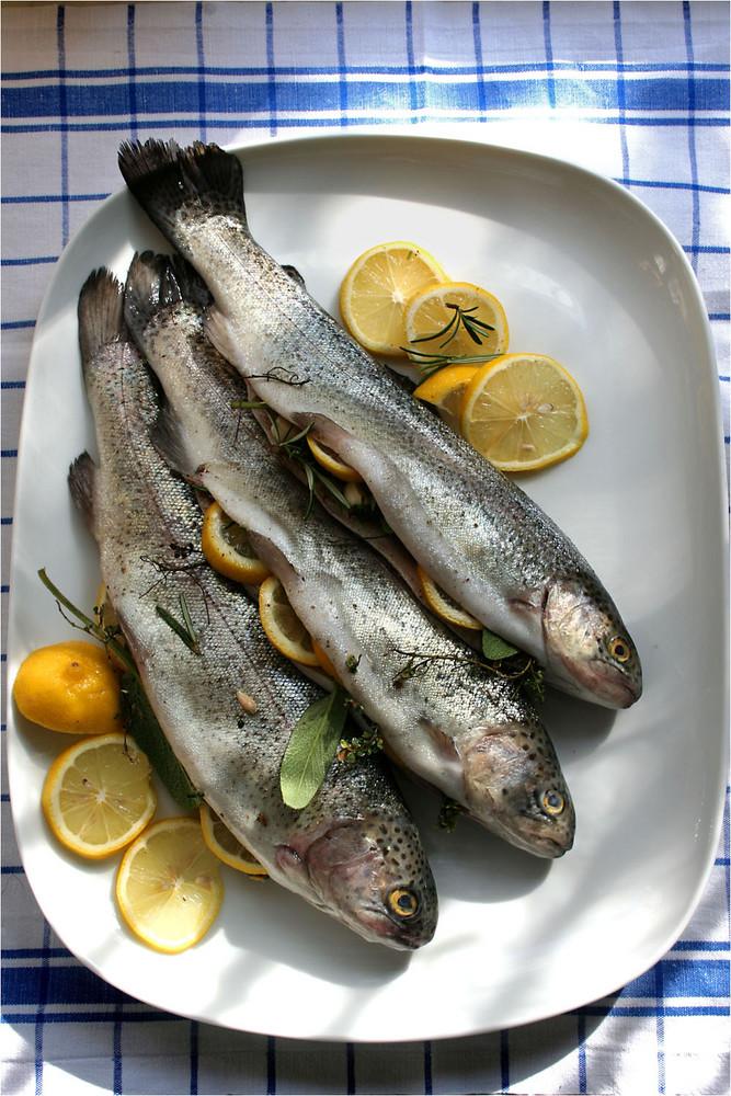 für die Fisch