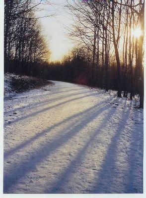 Für immer Winter.