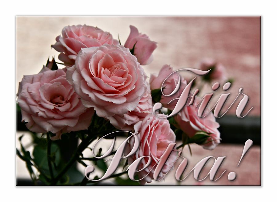 Für Petra, Fabienne und Eva-Maria!