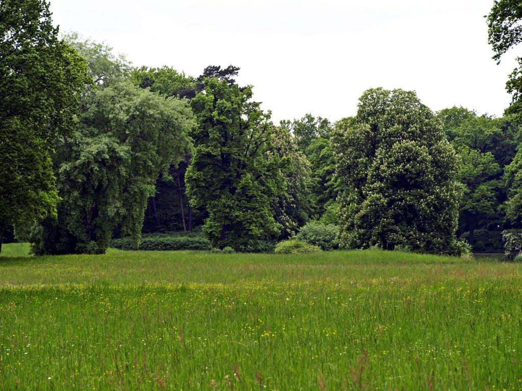 Fürst-Pückler-Park Branitz 14