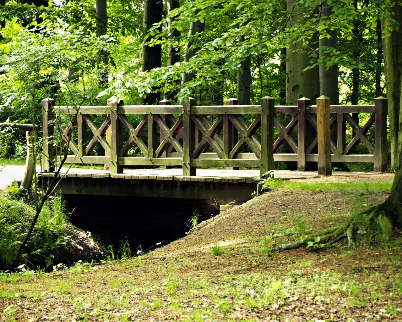 Fürst-Pückler-Park Branitz 3