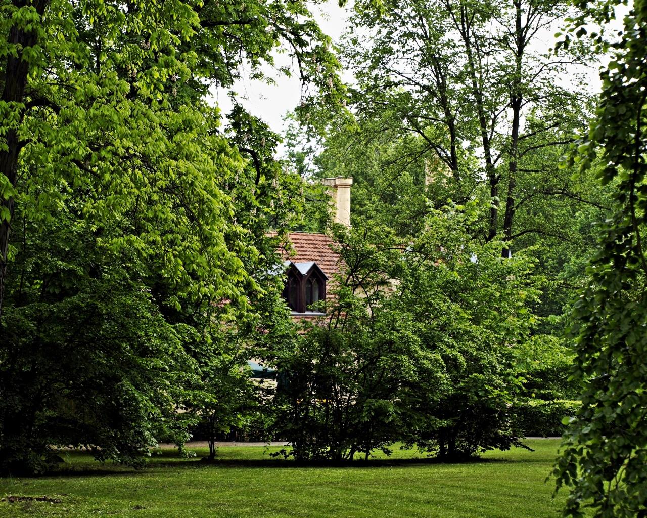 Fürst-Pückler-Park Branitz 5
