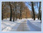 """..fürstlich """"Pückler Eis"""" & Schnee .. (23)"""