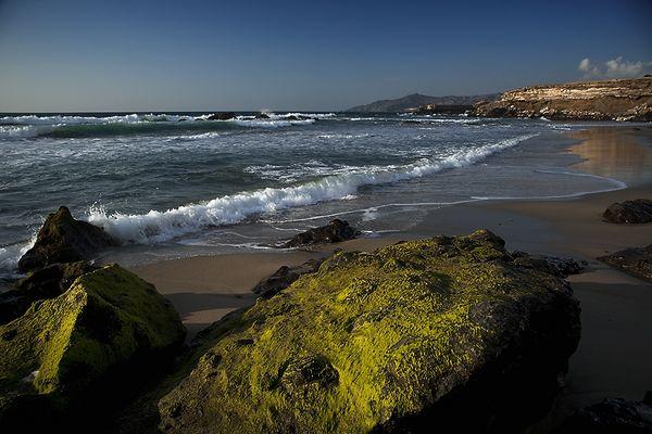 --- Fuerteventura ---