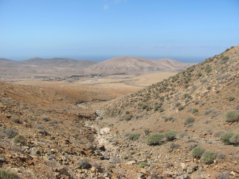 Fuerteventura (15)