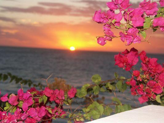 Fuerteventura am morgen