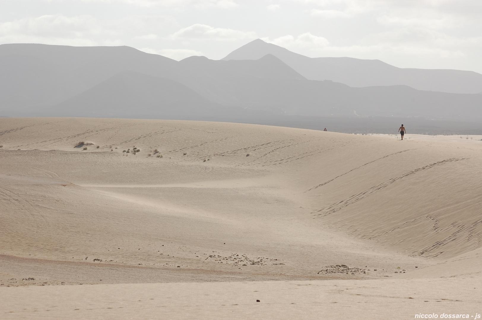 Fuerteventura - Corralejo - parque natural - Sahara-Sand -  Dünen ( D-09 / 2017 )