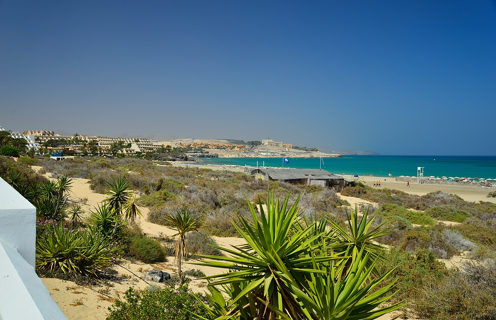 Fuerteventura Impression Juni-Juli 2013 Nr. 5 - Costa Calma -