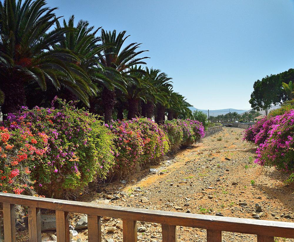 Fuerteventura Impression Juni-Juli 2013 Nr.33.
