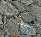 Fuerteventura Impression Juni-Juli 2013 Nr.35. - Costa Calma -