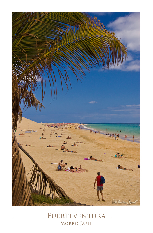 Fuerteventura IV