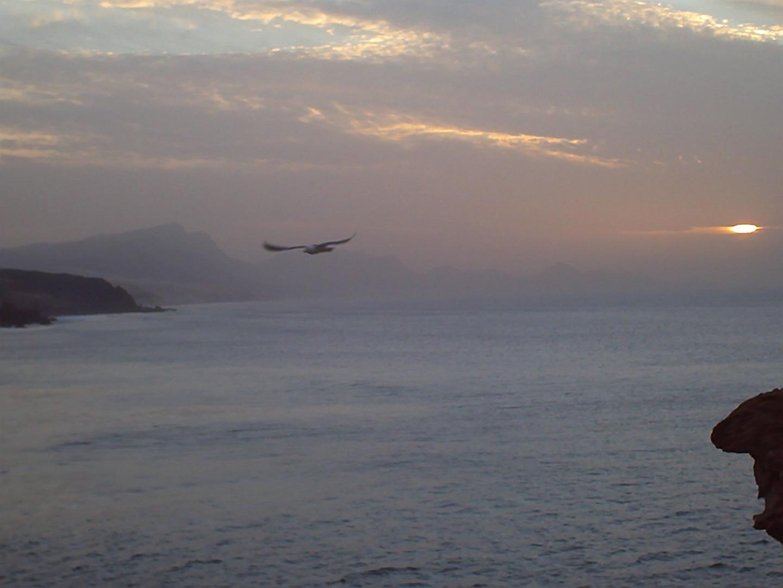 Fuerteventura Januar 2011