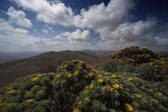 --- Fuerteventura - Morro Velosa ---