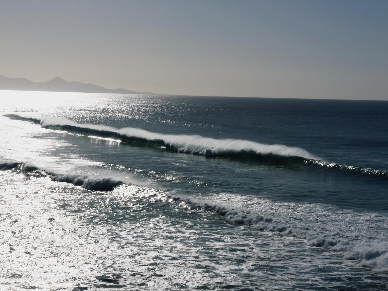Fuerteventura Waves