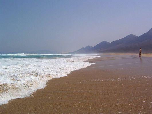 Fuerteventura Westküste 2003