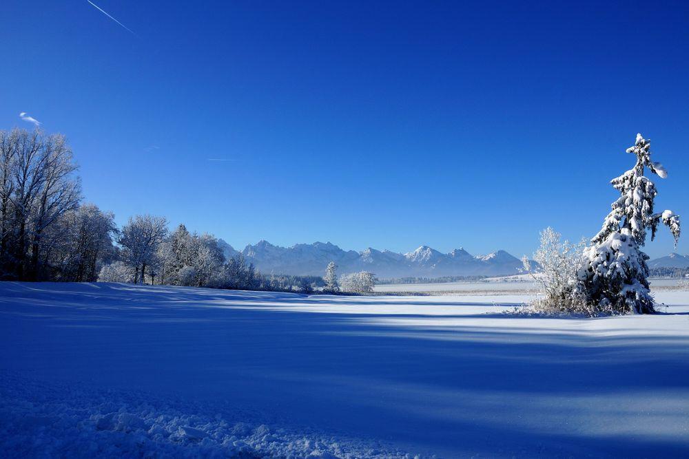 Füssener Berge II
