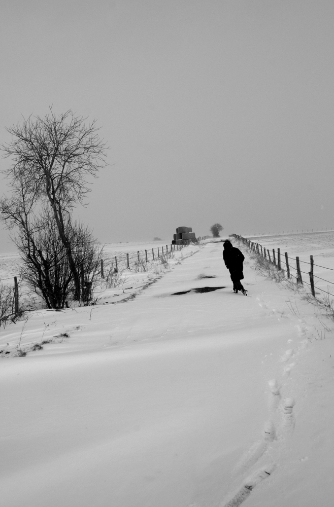 Fugue hivernale