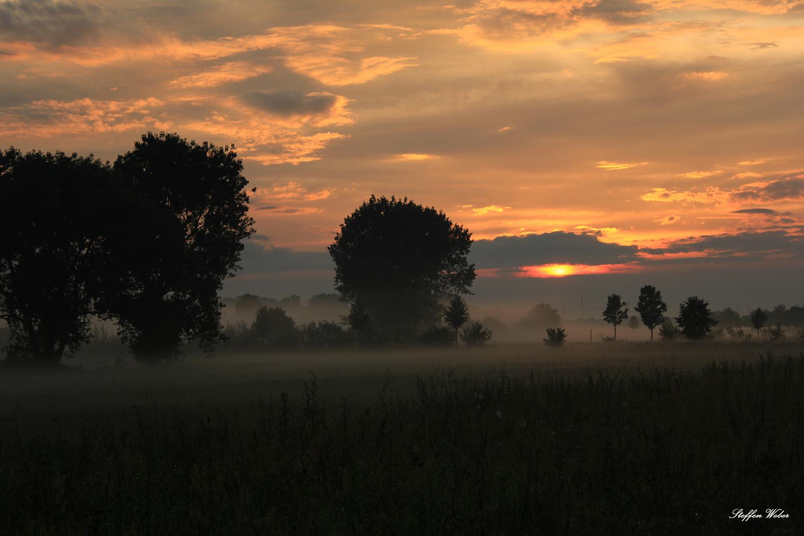 Fuhne Sundown