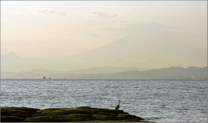 Fuji-san: a view from Enoshima
