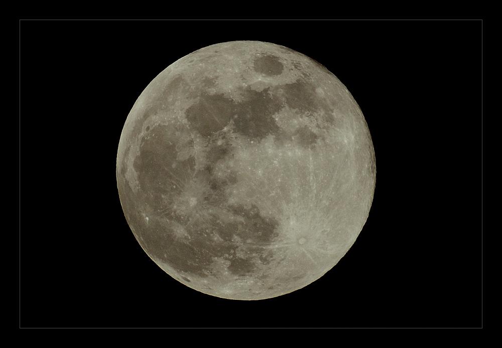 [ Full Moon Fever ]