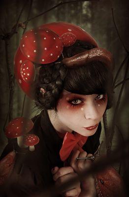 fungi phine