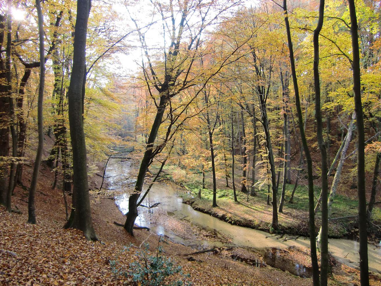Furlbachtal Ende Oktober