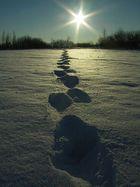 Fuß  Spuren bis in die Sonne