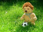 ... Fußball Bundesliga ...