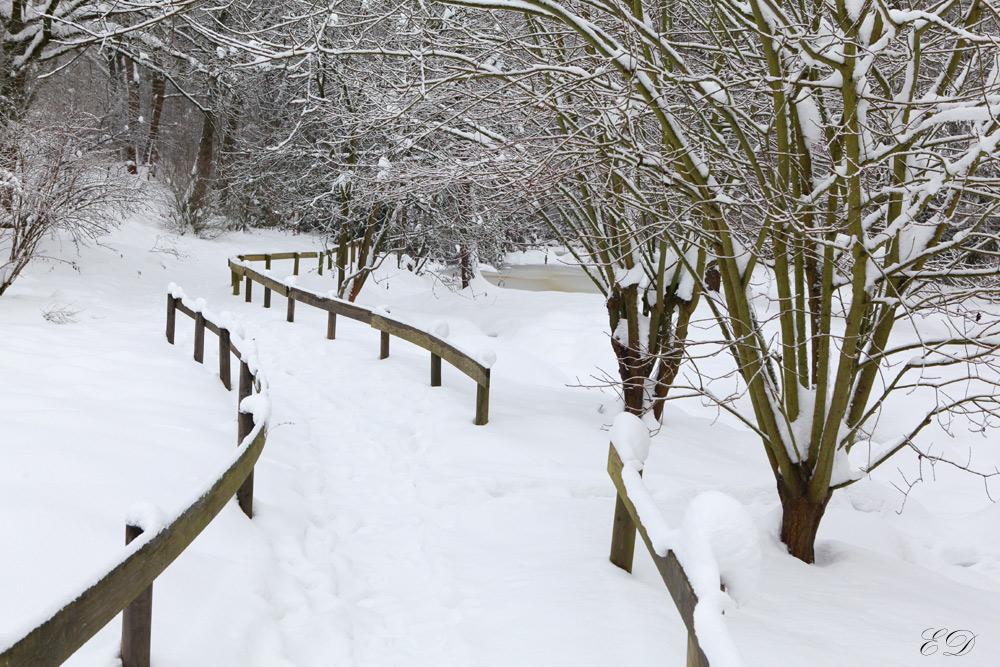 Fußweg im Winter