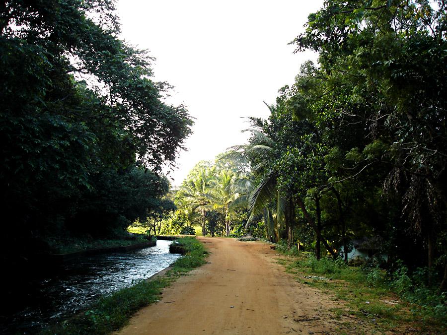 Fussweg zum Lake Giritale