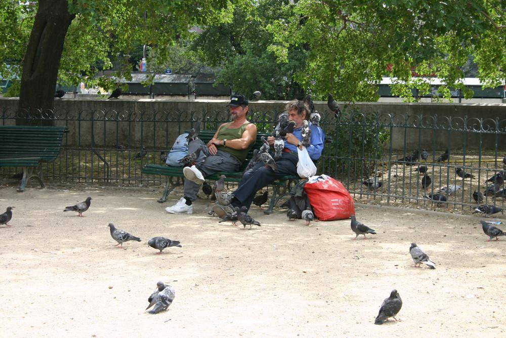 Futterzeit in Paris