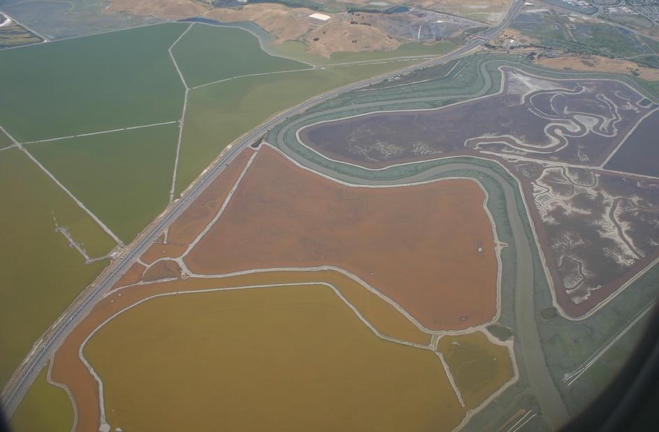 Futurismo naturale - San Francisco Bay