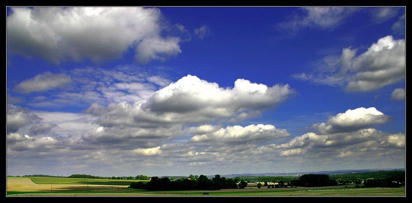 gänse - felder - wolken - blau