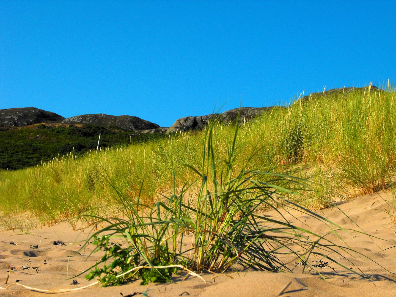 Gairloch Beach II