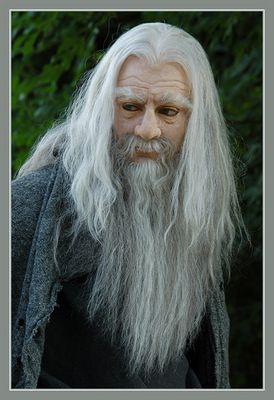 Gandalf der Graue