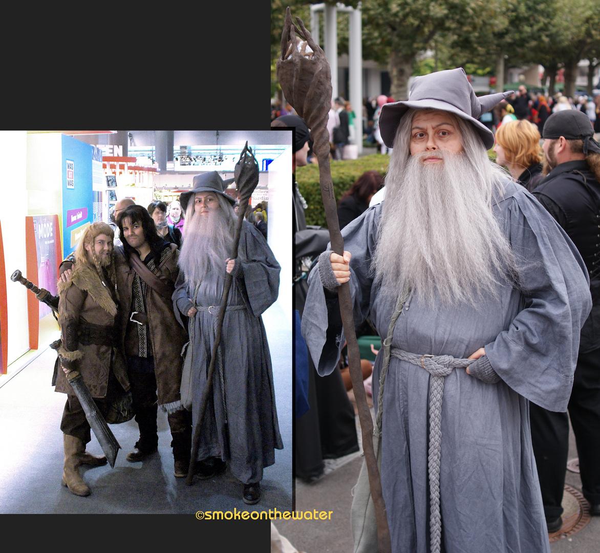 Gandalf mit Zwergen