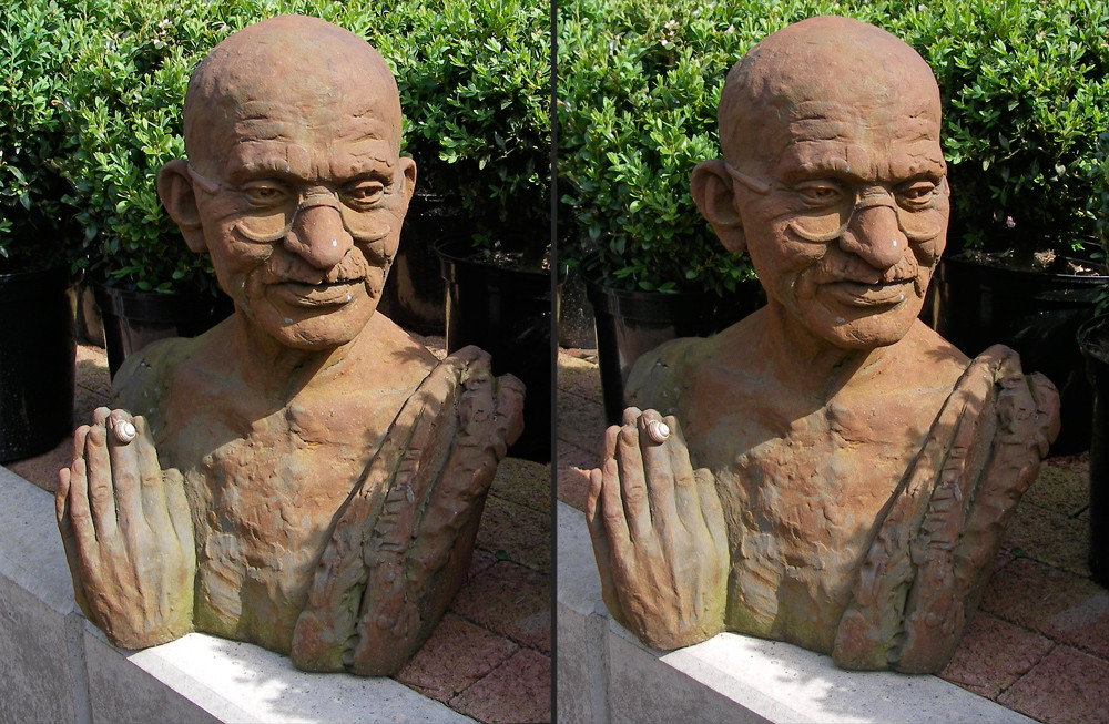 Gandhi amus igitour asini dumm sumus