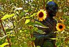 Gandhi in den Sonnenblumen