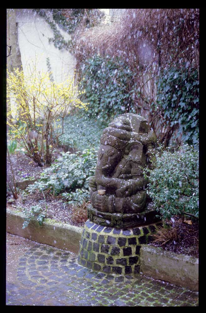 Ganesh en la nieve